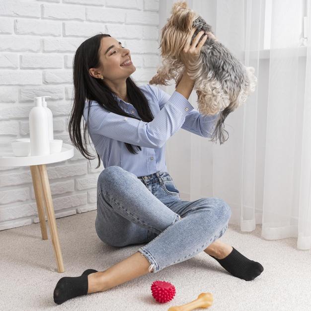 การดูแลสุนัขควรทำอย่างไร